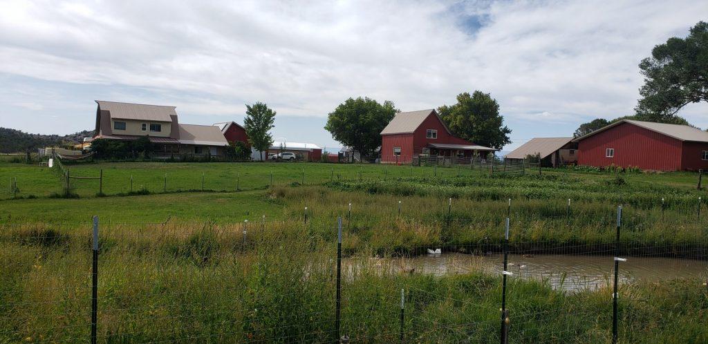 farm-with-duck-pond