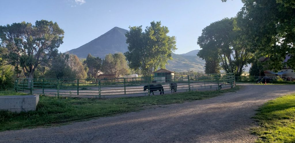 farm-with-horse-arena