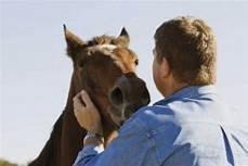 a-man-holding-a-horse