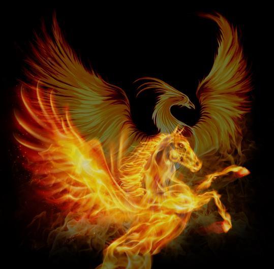 phoenix rising horse