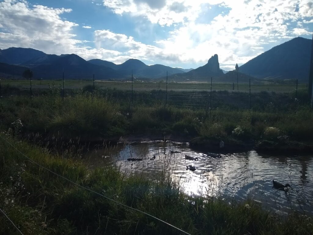 duck pond and needle rock